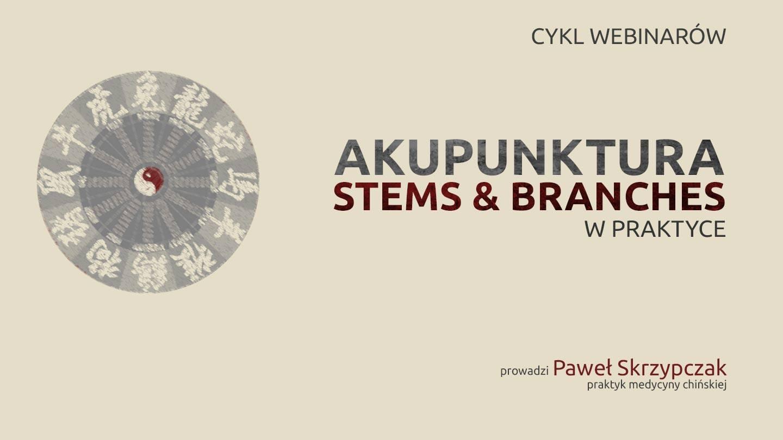 Akupunktura Stems & Branches w praktyce – cykl webinarów